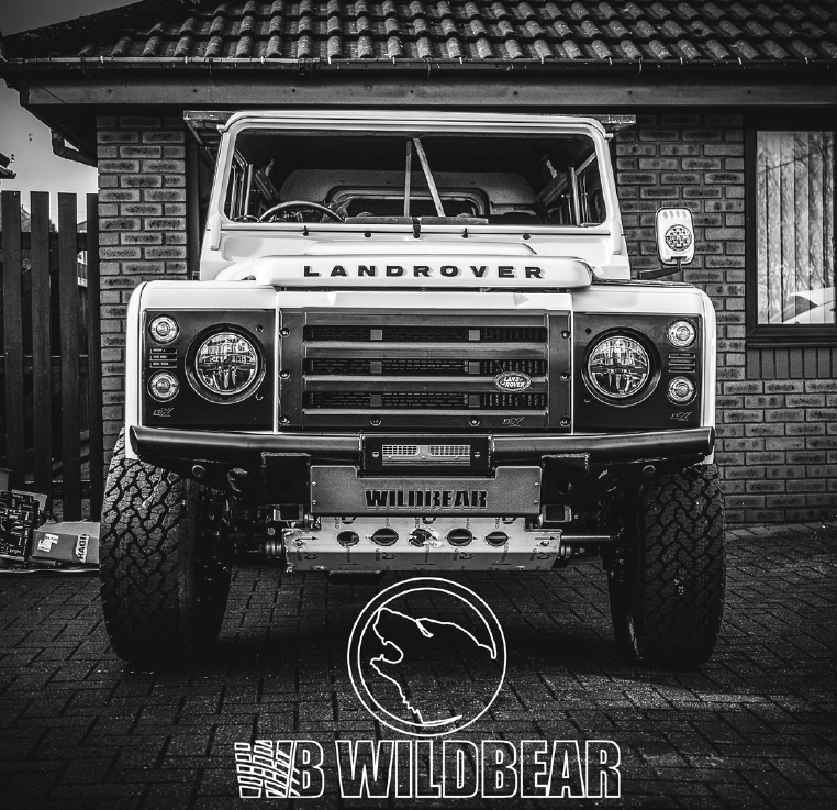 Wildbearlandy